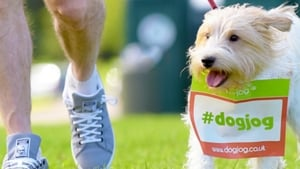 Dog Jog - various dates and locations